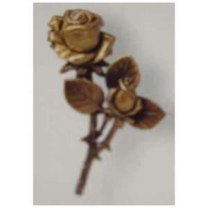 Caggiati Rose Shoot